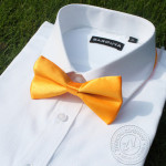 bowtie yellow solid