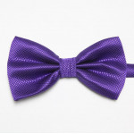 bowtie stylish dark purple