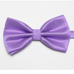 bowtie purple stylish