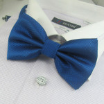 Stylish blue bowtie