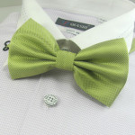 Apple-green bowtie stylish
