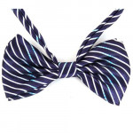 bowtie small purple striped
